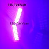 램프를 치료하는 395nm 100W UV 빛 LED