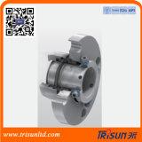 Механическое уплотнение Tssc-Fs03 один картридж уплотнение (Flowserve Isc1px)