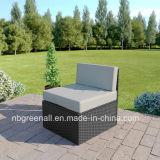 2018一定の藤の庭の家具を食事する新しいデザインコーナーの立方体