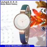 Reloj clásico del asunto que modifica el reloj de las señoras para requisitos particulares del reloj de la aleación (Wy-092D)