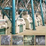 24h 당 100t의 농업 밀 선반 제분기 비분쇄기의 완전한 세트