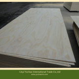 BB/CC grado para los muebles de madera contrachapada de pino