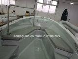 Liya 25pieds Hardtop auvent en fibre de verre pour la vente de bateaux de passagers en PRF