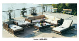 Meubles réglés de sofa de loisirs de rotin de PE de bâti de fer de cabriolet extérieur de Tableau