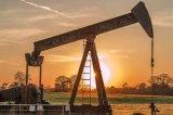 PAC voor de Levering van de Fabriek van de Rang Oildrilling direct