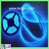 8mmの幅PCBのボードIP68 12V/24V 3528 60LEDs/M広告LEDの滑走路端燈