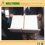 Panel-Styroschaum-Sandwichwand-Panels China-SIP für Fertighäuser