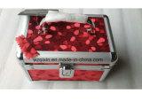 Profilés en aluminium de Nice Beautycase cas cosmétiques pour les produits cosmétiques 3PCS Set