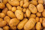 Copos de patata de alta calidad