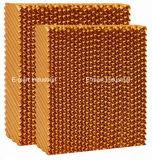 Pista de la refrigeración por evaporación para el sistema de ventilación del equipo de las aves de corral