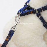 Harness fuerte del perro de la cuerda de los pantalones vaqueros de la fuente del animal doméstico