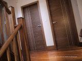 높은 가치 두 조정 창유리 전부를 가진 내부 단단한 나무 안쪽 문을 예약했다