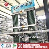 Cage de poule de ferme pour la vente à chaud