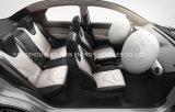 Automobile elettrica di rendimento elevato con l'alta velocità da vendere