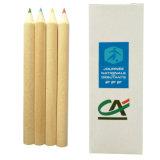 12 pzas brevePresharpened lápices de colores en forma redonda