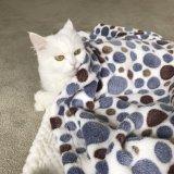 ペット製品は快適な珊瑚の羊毛のマット/空気調節猫犬毛布を厚くする