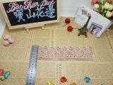 Merletto di nylon di immaginazione della guarnizione del ricamo del poliestere del merletto del nuovo di disegno ricamo del commercio all'ingrosso per l'accessorio degli indumenti & la decorazione domestica delle tende & delle tessile