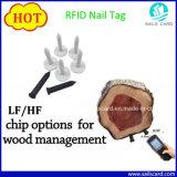 임업 나무 관리를 위한 Tk4100 RFID 나무 못 꼬리표