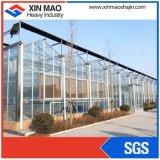 Glasgewächshaus für Gemüse-und Blumen-wachsendes