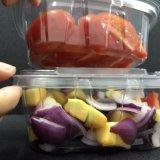 Quadratischer Dichtungs-Besetzer-offensichtlicher Salat-Kasten-Haustier-Plastik
