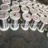 Fabrikant van China blikte Zilveren Koper Geëmailleerde Draad in