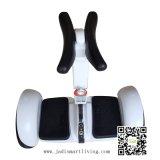 大人のための2つの車輪のバランスのスクーターのバランスをとっている縦のバランスの自己