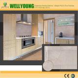 Новая плитка стены кухни конструкции