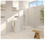 Baldosa cerámica esmaltada impermeable de la pared interior de la inyección de tinta 3D de Foshan 300600 para el sitio de lavado (CP314)
