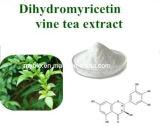 Fegato che protegge l'estratto naturale Dihydromyricetin 50%~90% del tè della vite