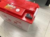 Beständige und sichere elektrische Dreiradleitungskabel-Säure-Batterie 12V60ah