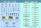 Qualitäts-allgemein verwendeter Reißverschluss-Abzieher