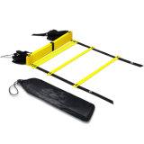 黒い携帯用ケースが付いているフットボールの速度及び敏捷のトレーニングの梯子