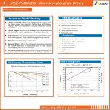 Batería libre del fosfato del hierro del litio del mantenimiento (LiFePO4) 19inch 48V100ah