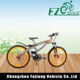 Li-Ionbatterie-volle Aufhebung-elektrisches Fahrrad 500W