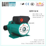 Limpiar el agua caliente de la bomba de circulación (RS15/4)
