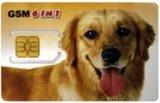 Doppelte SIM Karte