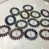 Maniküre-Funkeln-Chrom-Shinning Spiegel-Nagel-Kunst-Pigment des Chamäleon-DIY