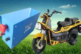 18650 Eツール電池のためのリチウムイオン電池のパック12V 62.4ah LiFePO4電池
