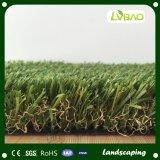 自然な緑の庭の人工的な美化の草
