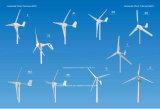 Turbine 200W 12V 24V del viento (FC-200S)