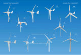 200W 12V 24V Wind-Turbine (SHJ-200S)