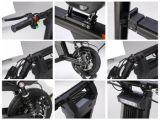 Piegando il motorino elettrico con l'ammortizzatore doppio, raddoppiar freno a disco posteriore, la visualizzazione di LED, indicatore luminoso del LED