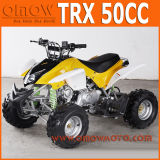 50cc - 110cc Kids Mini Quad ATV