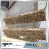 Marbre et granit en pierre normaux pour le Plinth et le cadre de porte