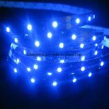 120LEDs/M 12V-24V SMD3528 2200-3500k scaldano l'indicatore luminoso di striscia bianco del LED