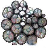 câble d'alimentation blindé d'aluminium isolé par PVC de jupe de PVC de bande en acier de 2-Core Vlv22