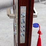 2017 Nuevo Panit de metal de la puerta de la casa de seguridad de acero para el exterior