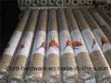 Ячеистая сеть PVC Coated шестиугольная для ячеистой сети курятника цыпленка