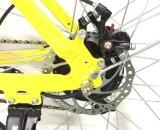 Bicicleta elétrica do vintage com bateria de Samsung
