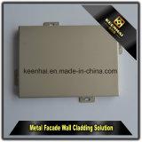 لون صنع وفقا لطلب الزّبون خارجيّة أو داخليّة ألومنيوم لوح مع [بفدف] طلية